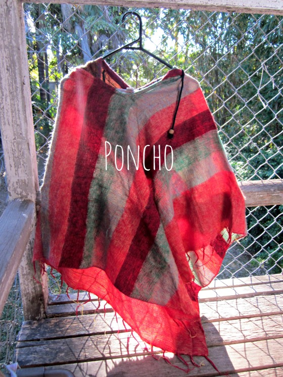 poncho edited